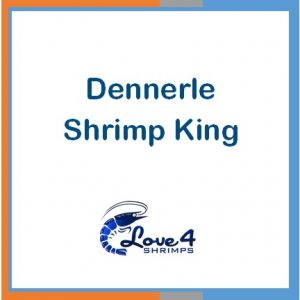 Dennerle Shrimp King